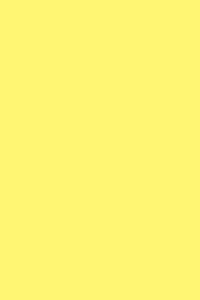 #773 (1 16X12)O.D.21X17