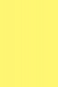 #529 (1 16X24)O.D.20X28
